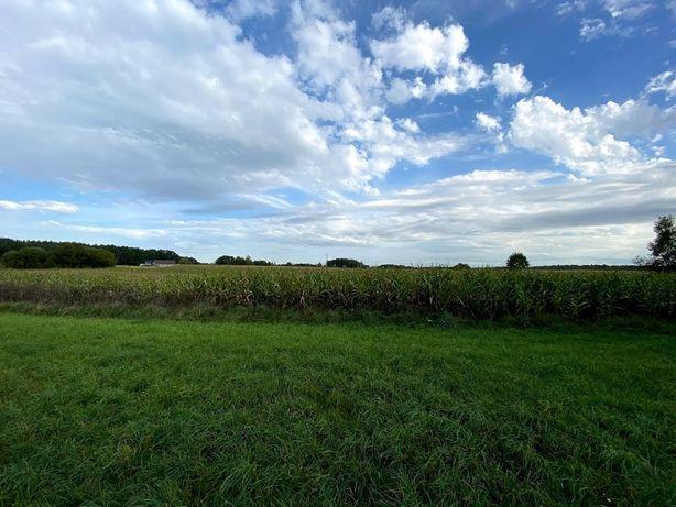 Ziemia Rolna 8 Hektarów Z Decyzją o Budowie Fermy Drobiu
