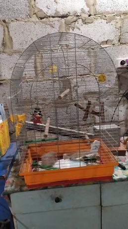 Клетка для попугая - люси (цинк)