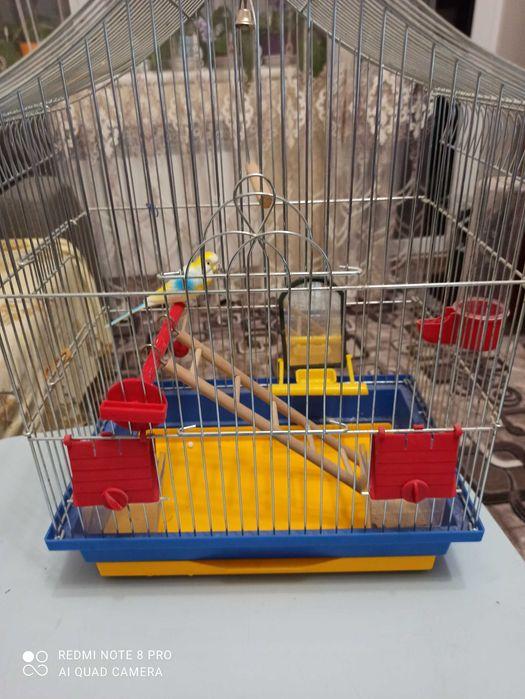 Продам клетку для попугайчика Южноукраинск - изображение 1