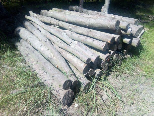 Drewno opałowe lipa, osika 2mp z transportem