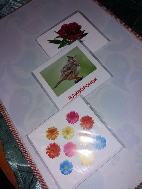 Пособие.Карточки для изучения английского.