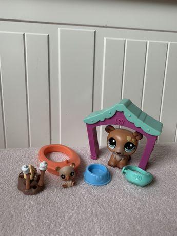 Littlest Pet Shop LPS miś misie niedźwiedź ruchomy zestaw baby mały