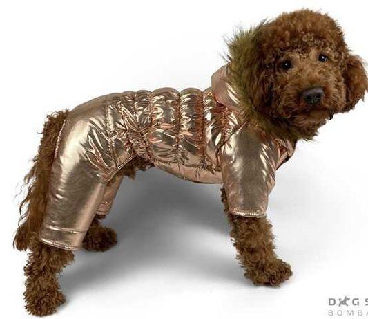Одежда для собак Зимний комбинезон DogsBomba Золото