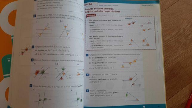 Livro actividades mat5