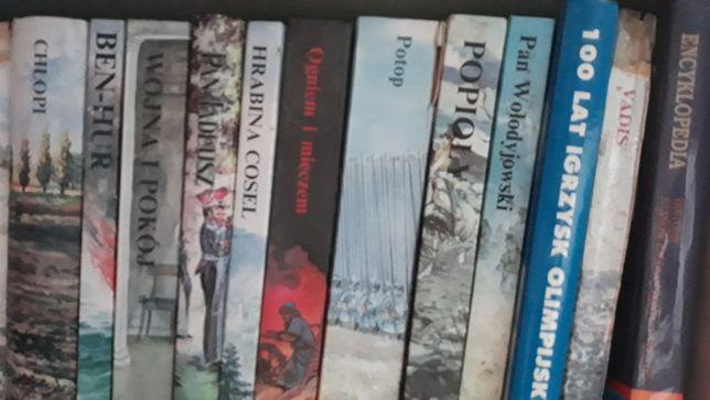 Książki,lektury,encyklopedie itp.