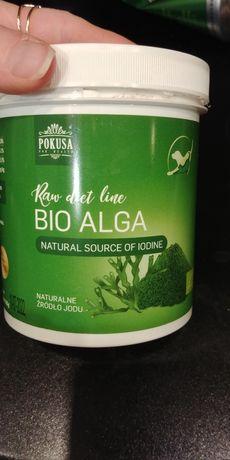 Algi morskie 350g dla psa
