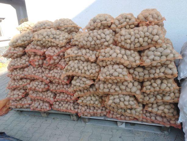 ziemniaki jadalne wineta, gala,