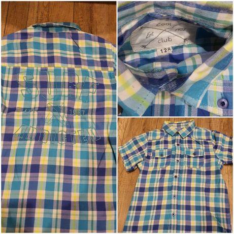 Koszula chłopięca 128 krótki rękaw, kratka Cool Club