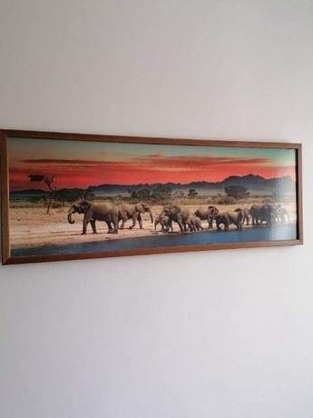 Obraz obrazy dekoracje