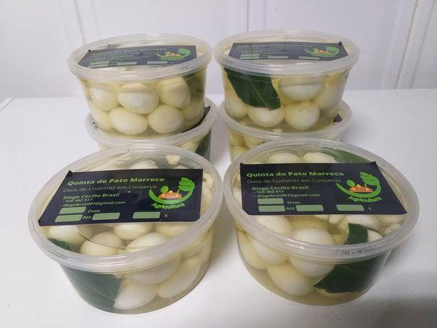 Vendo Ovos de Codrenizes em Conserva