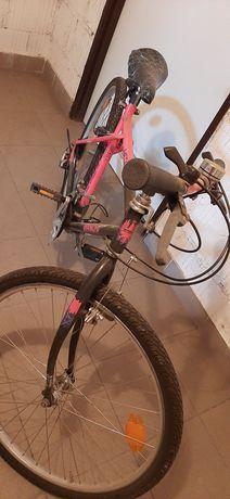 Rower damski BIANCHI