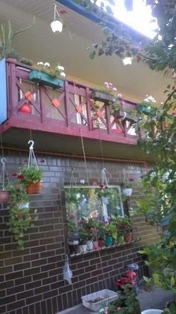 Продажа дома Новоград-Волынский, 2этажа, 124 м2