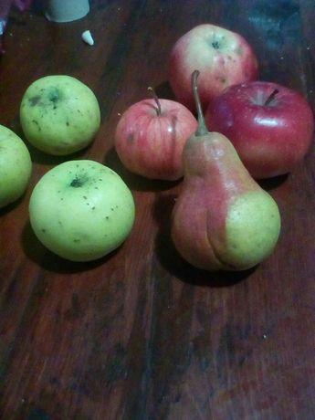 Яблоки из своего сада