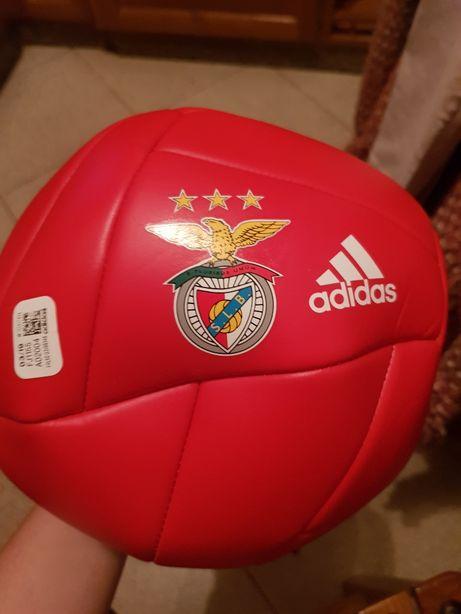 Bola Benfica Adidas Nova