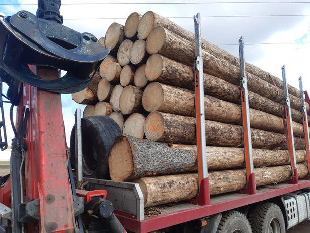 Drewno tartaczne,dłuzyca,kloda.Tartak
