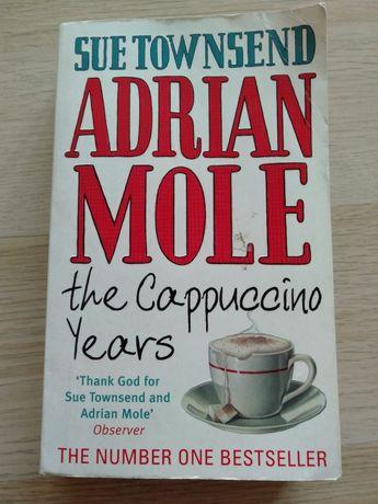 Adrian Mole Cappuccino Years Sue Townsend po angielsku book in English