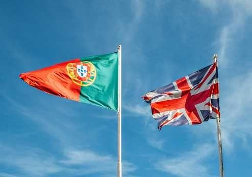 Aulas Online Português/Inglês