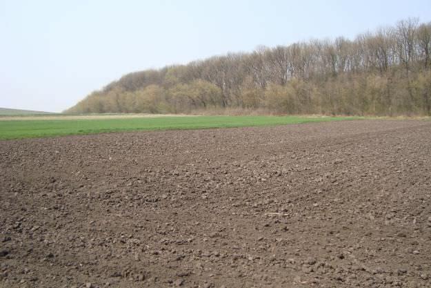 Продам земельный пай 2,4 гектара
