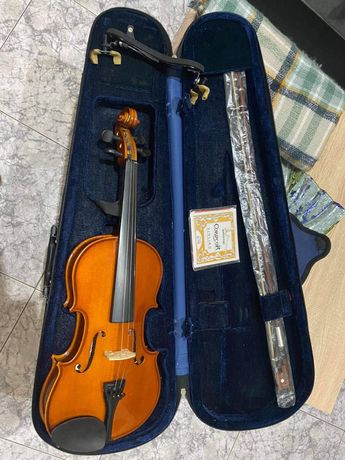 Violino cathedral 3/4