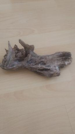 Ładny korzeń, zatapialny