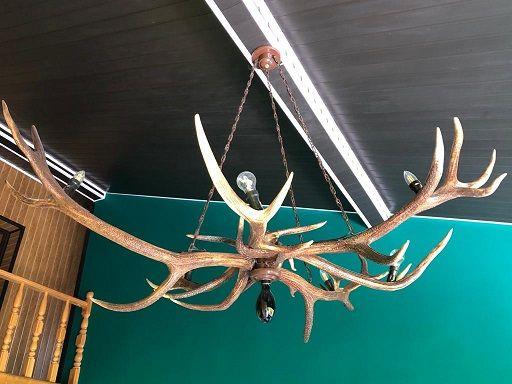Żyrandol z poroża Jelenia rozpiętość 2 m waga około 40 kg