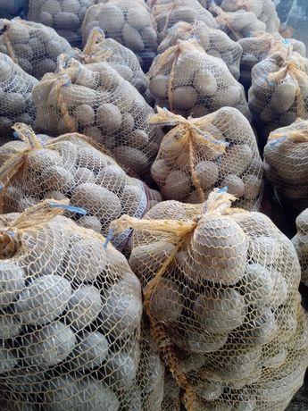 Ziemniaki jadalne Lulu 50 gr/kg