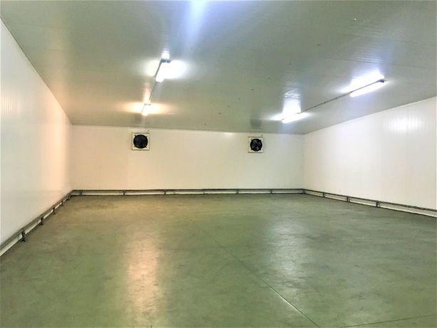 Magazyn chłodnia hala komora 250 m2 Błonie Ożarów Bronisze