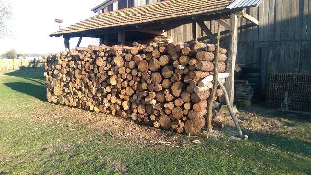 Sprzedam drzewo sosnowe 10 m3
