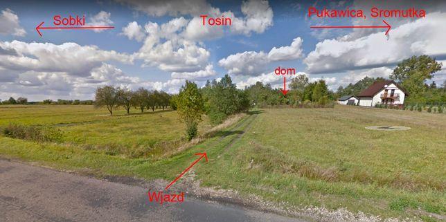 Gosp. rolne z zabudowaniami + działka leśna + rolna, 5,63 ha gm. Zelów