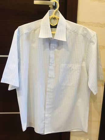 Koszula Pawo klasyczna, rozmiar 40, 176-182