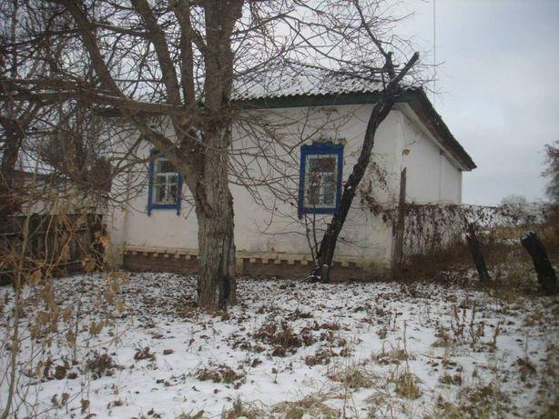 Дом на берегу Десны