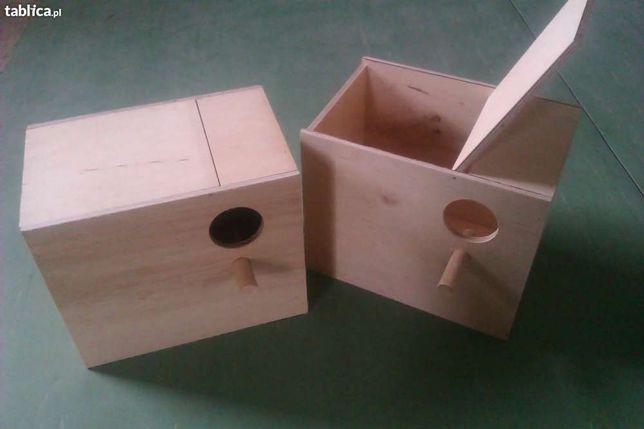 Budka lęgowa dla papug - nimfa świergotka koza łąkówka