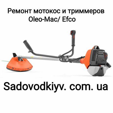 Ремонт мотокос и триммеров Олео-Мак/Ефко(Oleo-Mac/Efco)