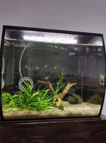 Akwarium Fluval Flex 57