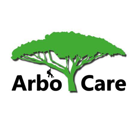 Wycinka drzew/pielęgnacja zieleni/usługi alpinistyczne