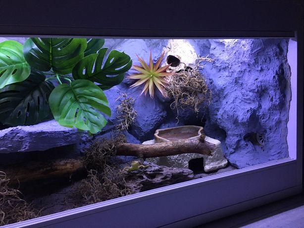 Terrarium 100x40x40 pustynne gekon lamparci wąż pyton