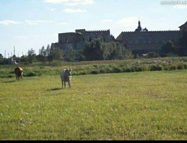 продам участок возле Меджибожской крепости