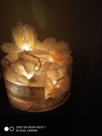 Światełka łańcuch ślub