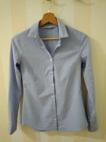 Koszula niebieska w białe kropki