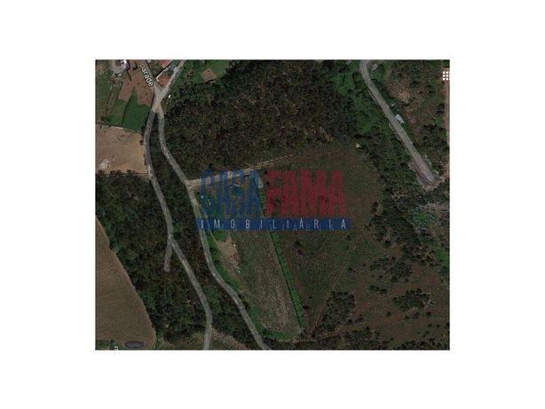 Terreno Agrícola com 3 hectares em Gondifelos – V.N. Fama...