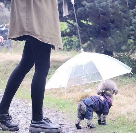 Guarda chuva para cães