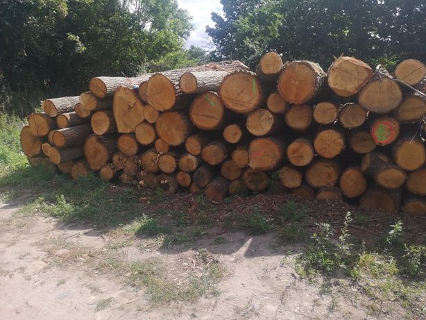 Praca fizyczna przy drewnie cięcie, łupanie. układanie drewna