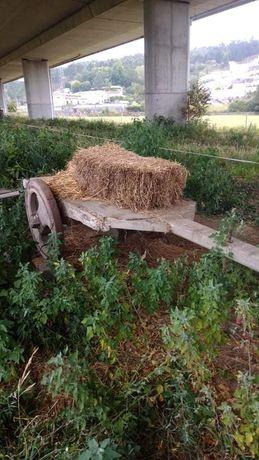 Utensílios agricultura