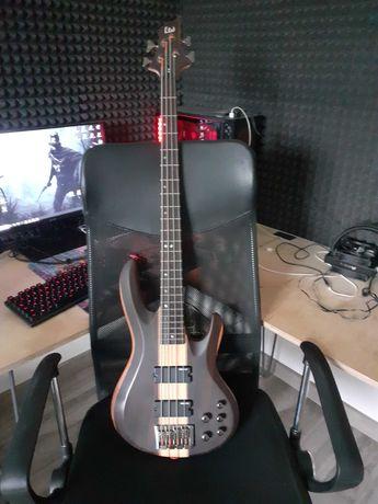 GItara basowa LTD B-4E NS ESP