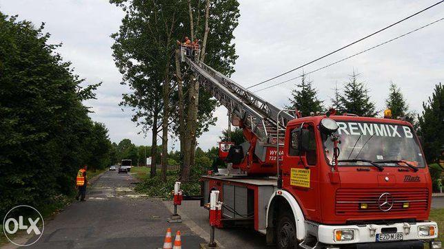 wycinka drzew rozbiórki zieleń hydroobsiew wyburzenia koparka wywrotka