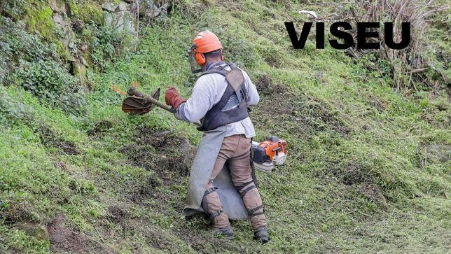 Limpeza de Terrenos, Matas, Ruínas, Jardins, Campos, Casas, Pinhais et