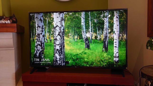 TV LED LG SMART 4K  49 ( 124 cm )