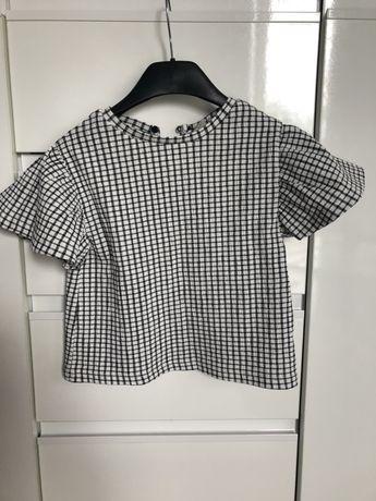 Bluzka motylek Zara 110
