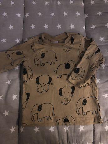 Bluzeczka hm