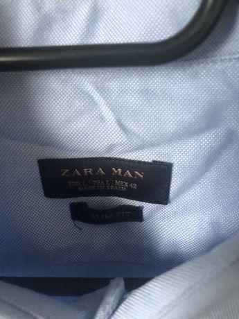 Blekitna koszula Zara Man L